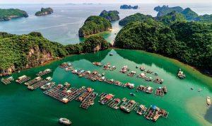Vịnh Lan Hạ - Quảng Ninh